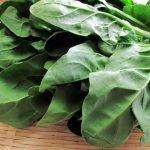 ほうれん草の鮮度は葉でチェック!バター炒めがビタミン摂取に効果大?