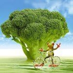ブロッコリーのビタミンC やβ−カロテンの効果とは?茎にも栄養!