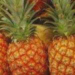 パイナップルの栄養やカロリーは?酵素の力でダイエット効果