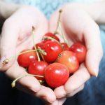 さくらんぼの種を取る方法や可愛いアレンジ!人気で簡単なスイーツレシピ