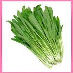 みぶ菜の人気で簡単な漬物レシピ!生と鍋で栄養価に違いはあるの?