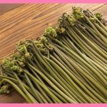 わらび(山菜)のあく抜き方法や人気で簡単なレシピ!適切な保存法