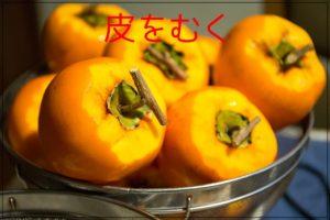 干し柿の簡単な作り方、時期はいつ、焼酎漬け、室内でもカビない