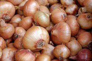 新玉ねぎと玉ねぎの違い、栄養、見分け方、向いている調理方法